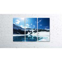 Красива модульна картина Prm826, 80х120 см
