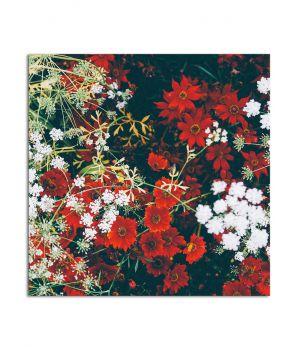 Интерьерная картина на холсте Pr2504264, 25х25 см