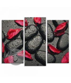 Картина Черные камни с красными лепестками