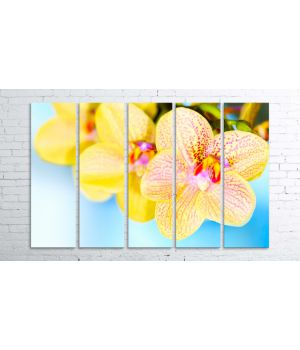 Модульна фотокартина Prm196, 100х150 см