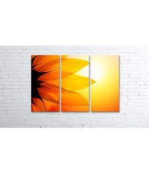 Красива модульна картина Prm824, 80х120 см