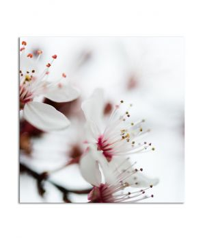 Интерьерная картина на холсте Pr2504394, 25х25 см