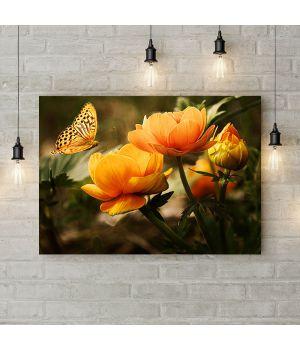 Картина на холсте Бабочка и оранжевые цветы, 50х35 см