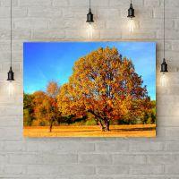 Картина на холсте Осеннее дерево, 50х35 см
