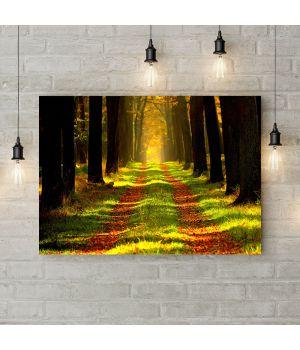 Картина на холсте Сквозь леса, 50х35 см