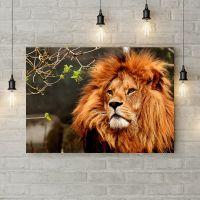 Картина на холсте Лев с пышной гривой, 50х35 см