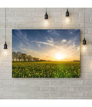 Картина на холсте Восход солнца над полем, 50х35 см