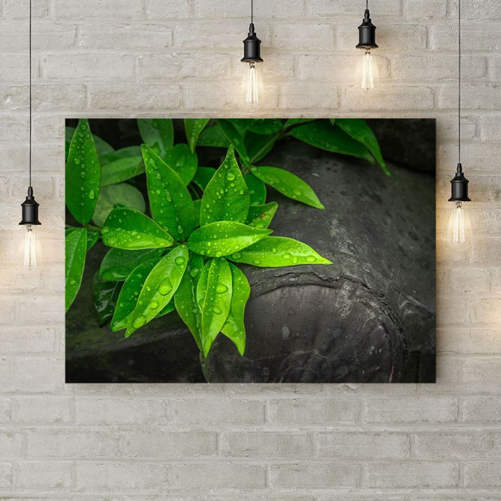 Картина на холсте Зеленые листья на сером фоне, 50х35 см