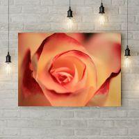 Картина на холсте Бутон розы макросьемка, 50х35 см