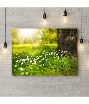 Картина на холсте Запах весны, 50х35 см
