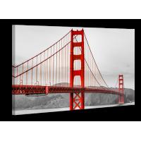 Картина на холсті XP133, 50х70 см