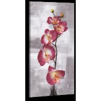 Оригинальная дизайнерская картина XP216, 50х100 см