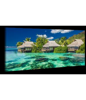 Оригінальна дизайнерська картина XP167, 50х100 см