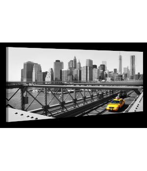 Оригінальна дизайнерська картина XP156, 50х100 см