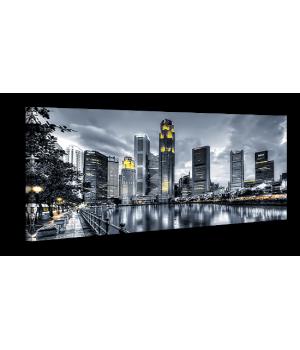 Оригинальная дизайнерская картина XP059, 50х100 см