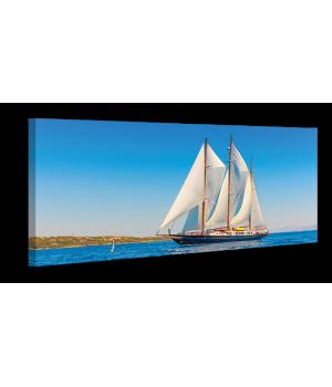 Оригинальная дизайнерская картина XP069, 50х100 см