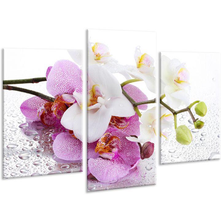Красива кімнатна модульна картина на полотні Orchid AMD 015, 96х70 см