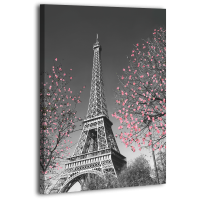 Картина на холсті XP149, 50х70 см