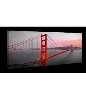 Оригинальная дизайнерская картина XP072, 50х100 см