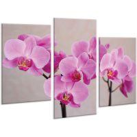 Красивая комнатная модульная картина на холсте Orchid AMD 096, 96х70 см