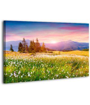 Картина на холсте XP396, 50х70 см