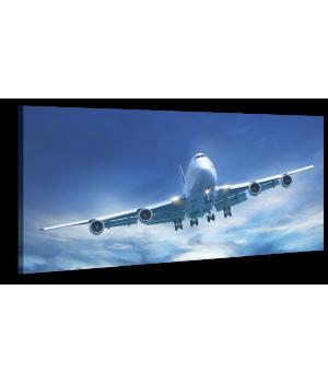 Оригінальна дизайнерська картина XP203, 50х100 см