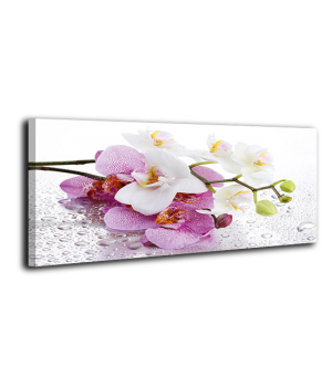 Оригинальная дизайнерская картина XP064, 50х100 см