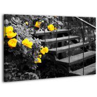 Картина на холсте XP416, 50х70 см