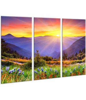 Красивая комнатная модульная картина на холсте AMD 122, 96х70 см