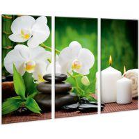 Красивая комнатная модульная картина на холсте Orchid AMD 011, 96х70 см