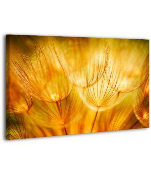 Картина на холсте XP482, 50х70 см