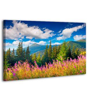 Картина на холсте XP409, 50х70 см