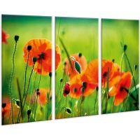 Красива кімнатна модульна картина на полотні Poppy AMD 012, 96х70 см