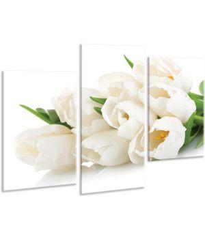 Красивая комнатная модульная картина на холсте Tulips AMD 090, 96х70 см