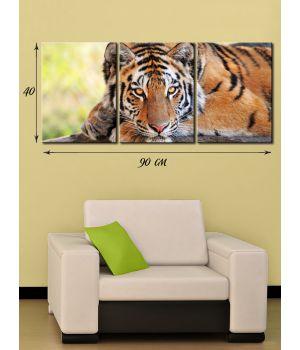 Модульная картина на холсте Тигровый портрет