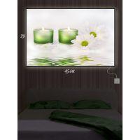 Картина с подсветкой 29х45 Цветочная романтика