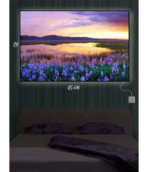 Картина с подсветкой 29х45 Цветы на берегу