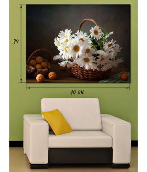 Картина на холсте 30х40 Белоснежные ромашки
