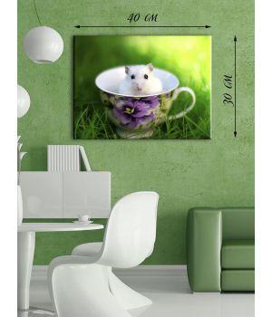 Картина на холсте 30х40 Белый мышонок