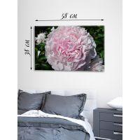 Картина на холсте 38х58 Розовая нежность