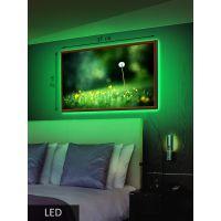 LED Картина Средняя, Одуванчик