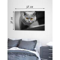 Картина на холсте 38х58 Кошка