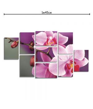 Модульная картина в гостиную с рисунком Розовая орхидея