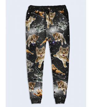 Модные женские брюки Коты