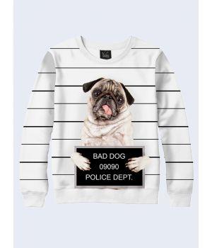 Мужской свитшот Bad dog