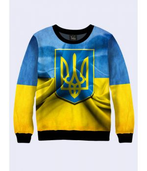 Чоловічий світшот Символ України
