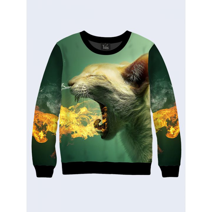Мужской свитшот Огненный кот