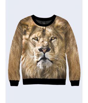 Свитшот Мудрый лев