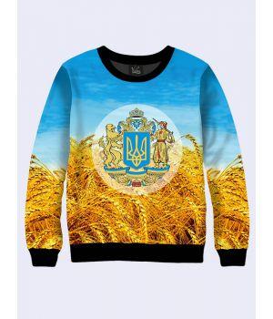 """Свитшот для мужчин """"Символы Украины"""" сине-желтый"""