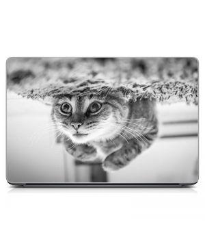 """Універсальна наклейка для ноутбука 15.6""""-13.3"""" Кумедний кіт Матовий 380х250 мм"""
